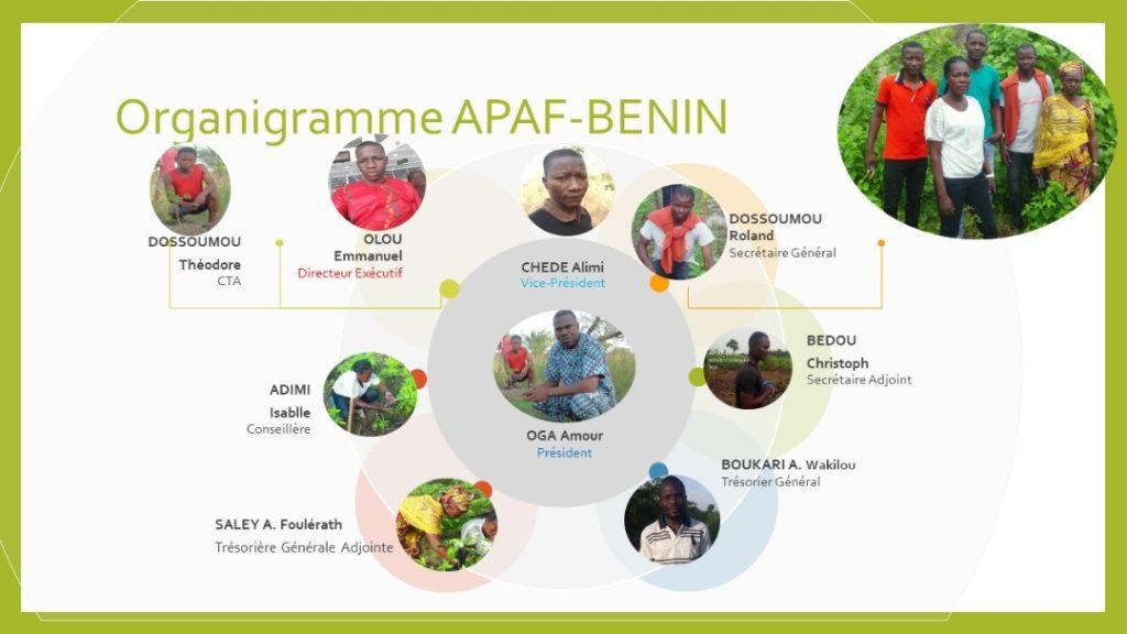 organigramme-APAF-Benin